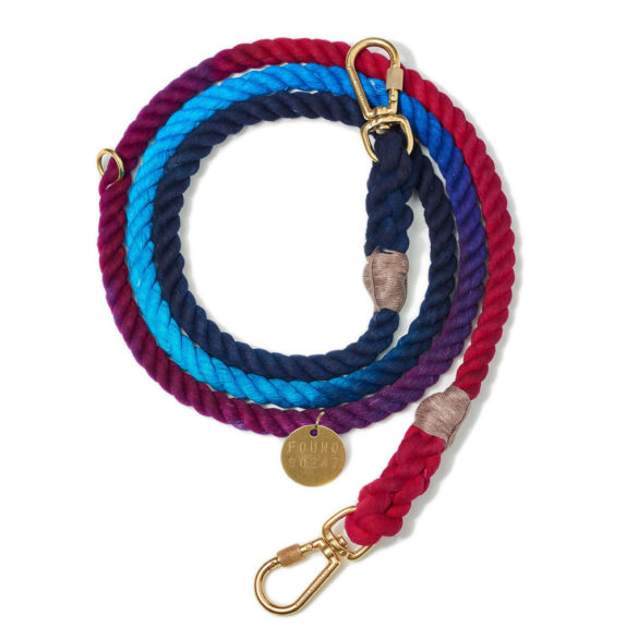 Cosmic storm rope dog leash, adjustable