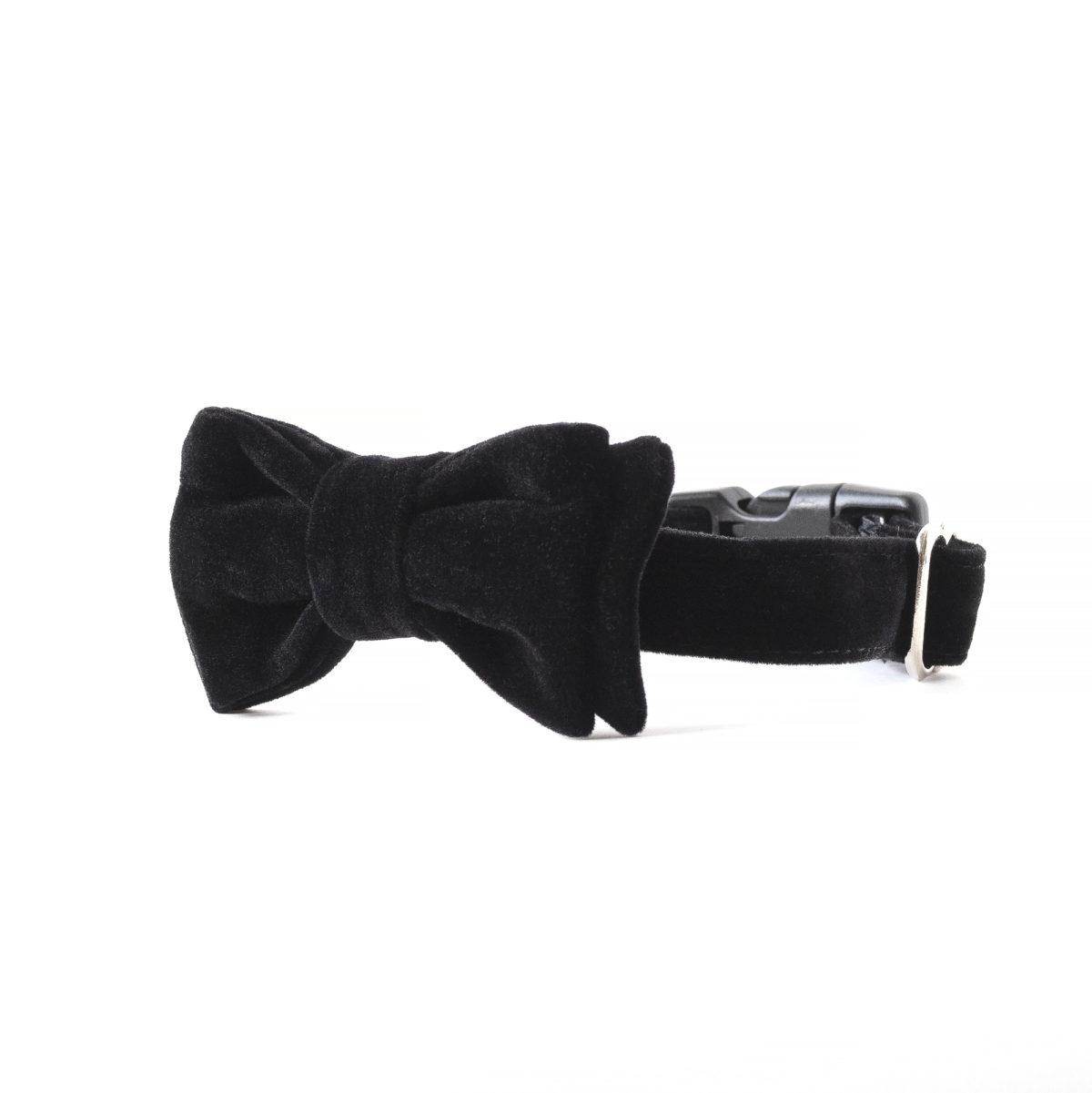 Bond Dog Bow Tie