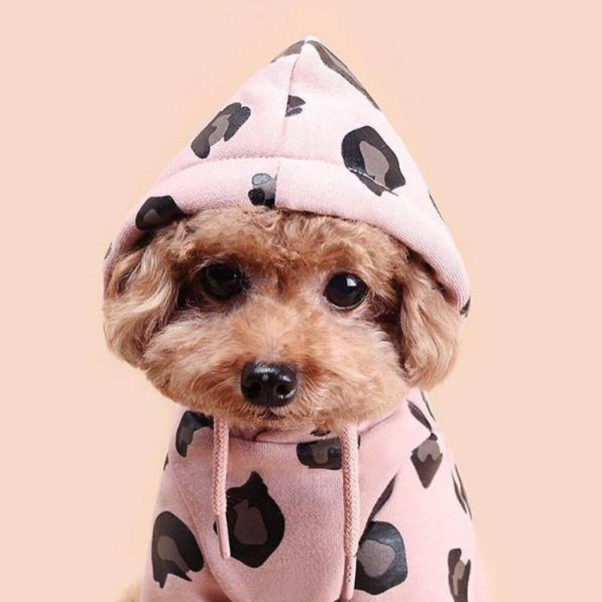 Hoodie Leopard Pink 7