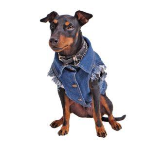 Raw Blue Denim Dog Vest